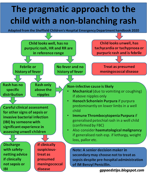 The pragmatic approach to the child with non-blanching rash